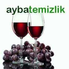 Koltuktaki Şarap Lekesi Nasıl Çıkar?